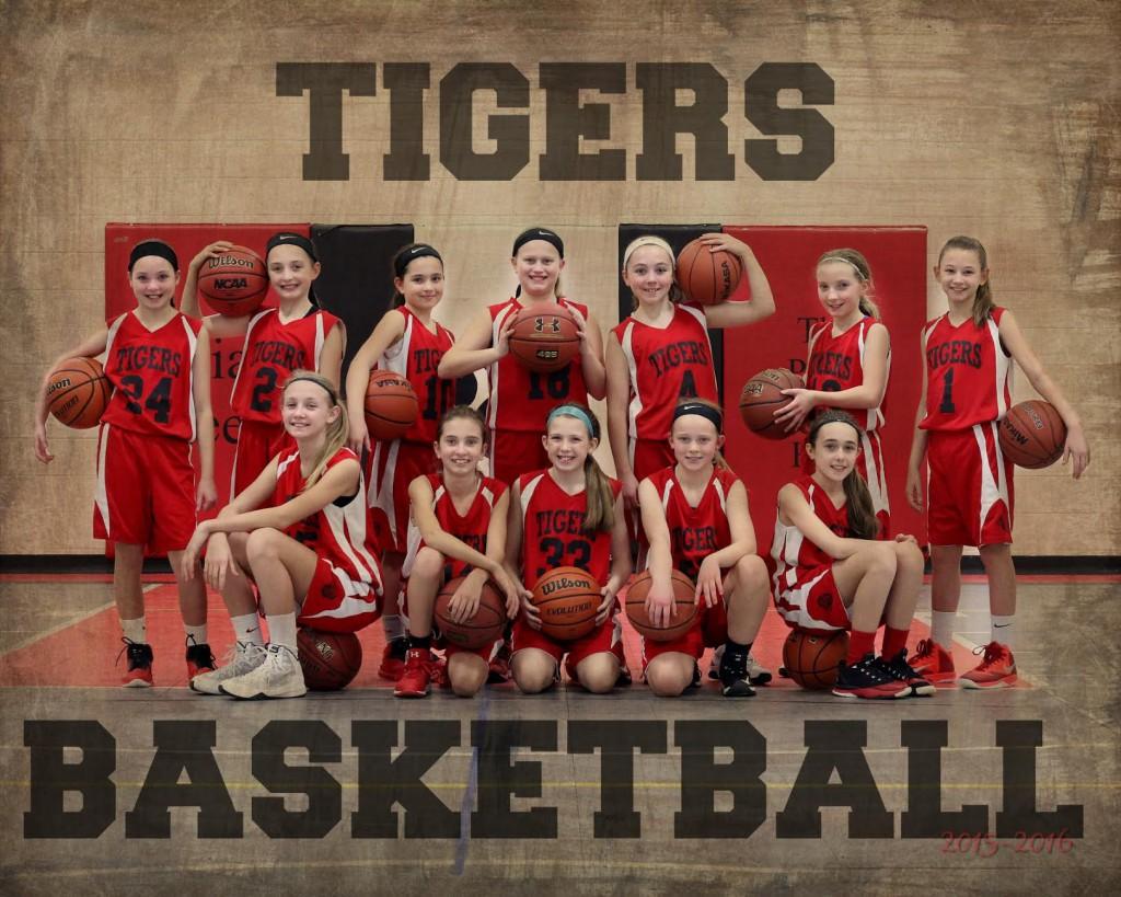 Tigers Team Photo 2016